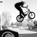Joris Coulomb - Coffin Barspin
