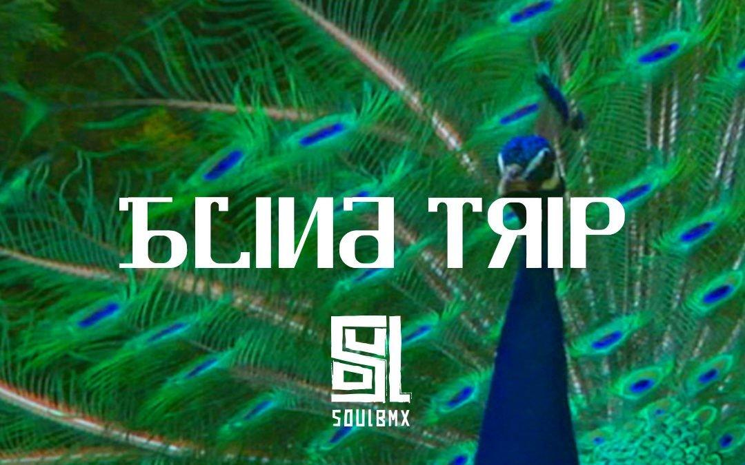 Kevin Kalkoff – Soul x DIG Blind Trip